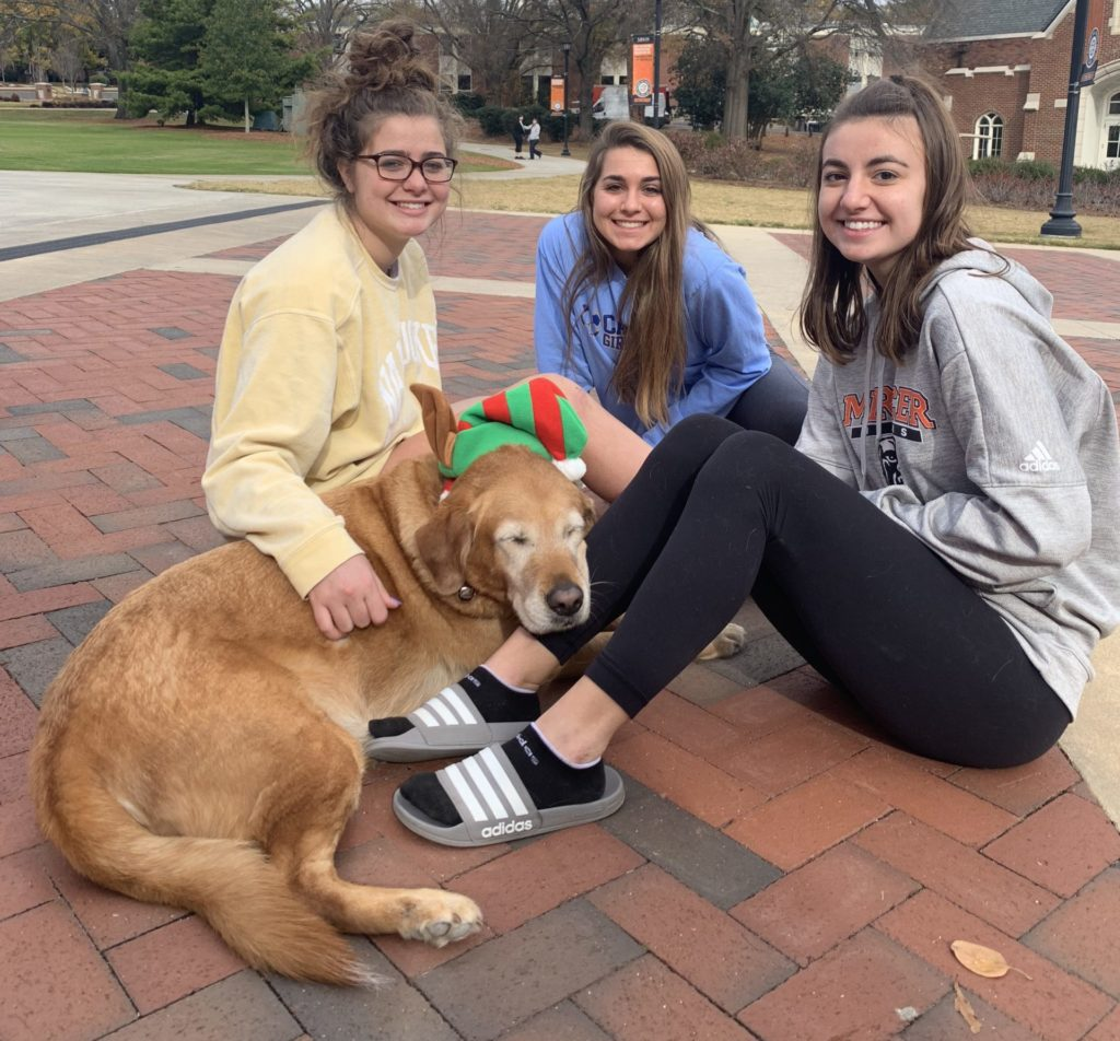 Mercer students pet Rubble while visiting the Ask Mom MU table last year.